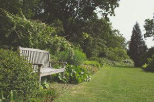 Bench in garden